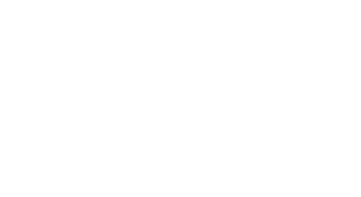 SoftConsulting